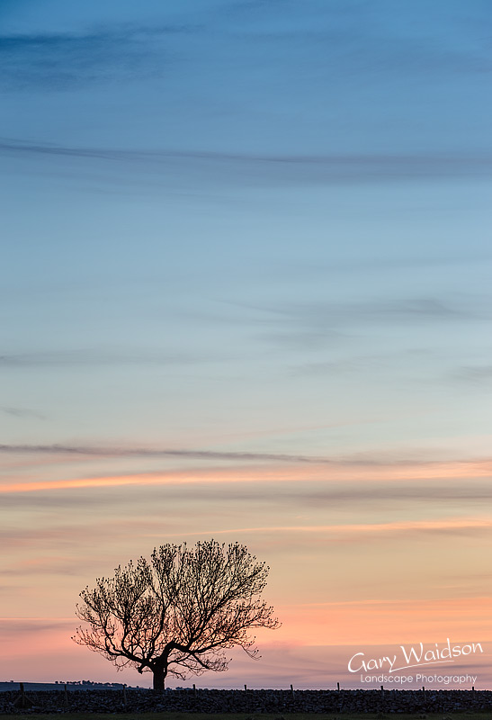 Magpie Dawn. Fine Art Landscape Photography by Gary Waidson