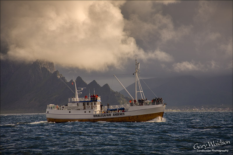 Whalesafari Andenes. Fine Art Landscape Photography by Gary Waidson